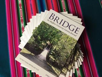 Bridge Pic 4